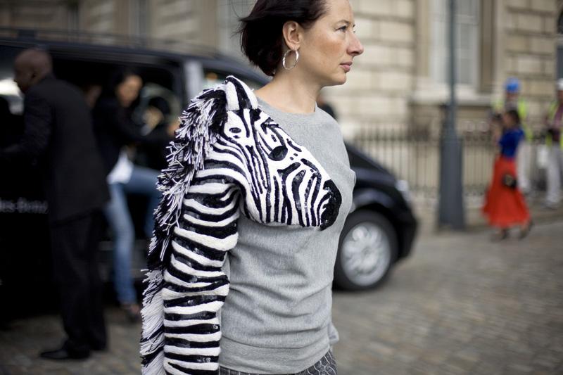 street-peeper-zebra_lionsandwolves
