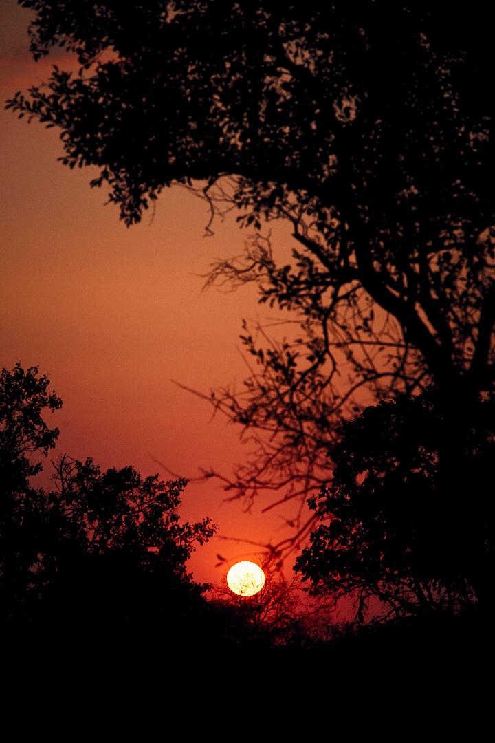 HABLAMOS_DE_MODA_JOSE_LUIS_TABUENA_SUDAFRICA_ATARDECER_3