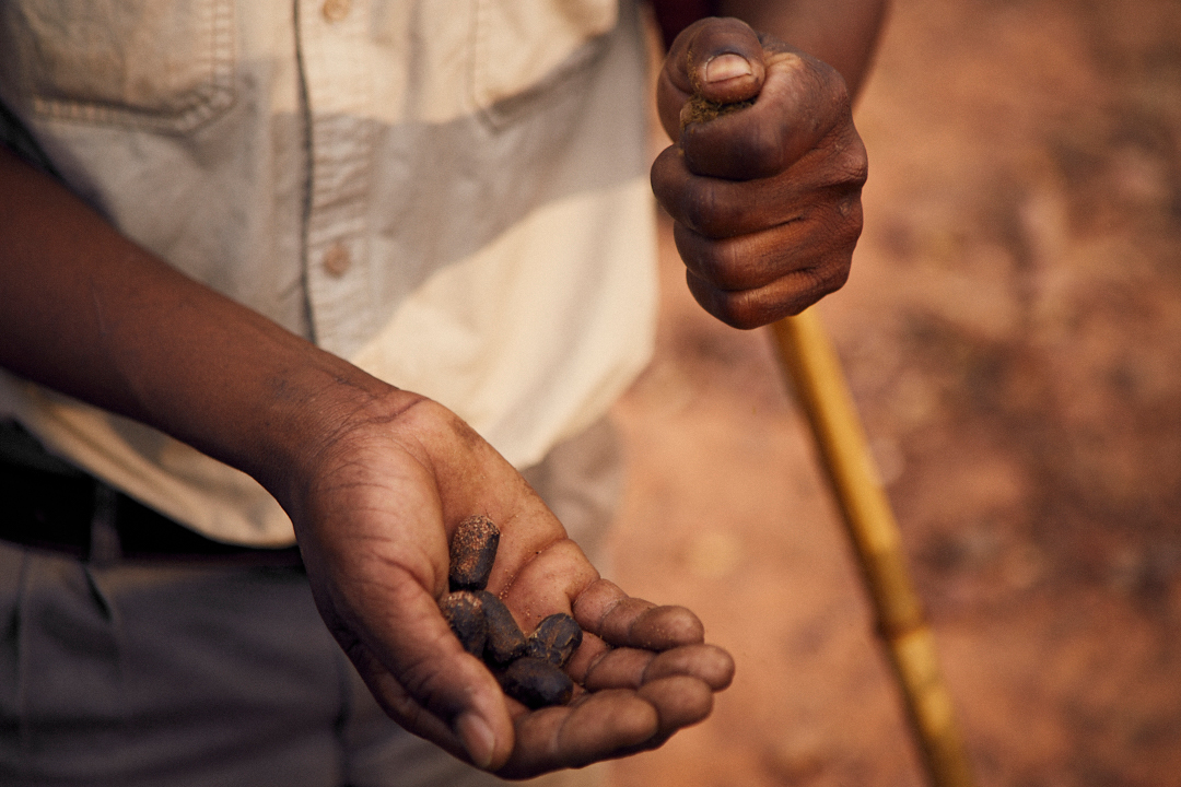 HABLAMOS_DE_MODA_JOSE_LUIS_TABUENA_SUDAFRICA_ATARDECER_7
